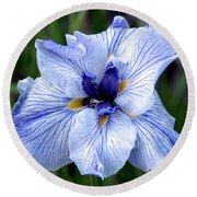 Japanese Water Iris In Blue 2695 H_3 Round Beach Towel