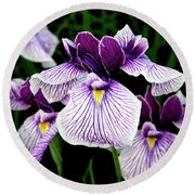 Japanese Water Iris In Purple 2714 H_2 Round Beach Towel