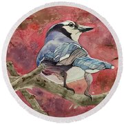 Jay In The Japanese Maple Round Beach Towel