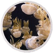 Jelly Parade Round Beach Towel by Jim And Emily Bush