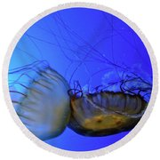 Jellyfish Collision Round Beach Towel