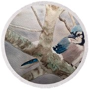 Cold Winter's Jay Round Beach Towel