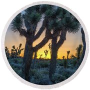 Joshua Framed By Joshua Round Beach Towel