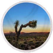 Joshua Tree Round Beach Towel