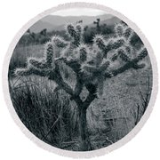 Joshua Tree Cactus Round Beach Towel