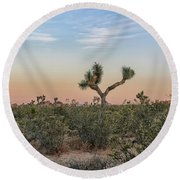 Joshua Tree Evening Round Beach Towel