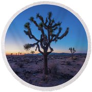 Joshua Tree Glow Round Beach Towel