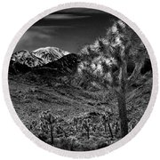 Round Beach Towel featuring the photograph Joshua Tree In Black And White In Joshua Park National Park With The Little San Bernardino Mountains by Randall Nyhof