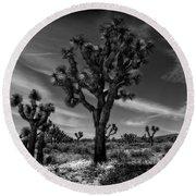 Joshua Trees Series 9190678 Round Beach Towel