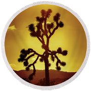Round Beach Towel featuring the photograph Joshua Tree by Stephen Stookey
