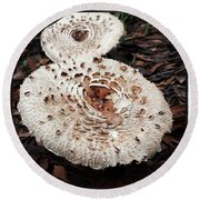 Round Beach Towel featuring the photograph Joy Walking In The Woods by Mr Photojimsf