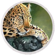 Round Beach Towel featuring the painting Jumanji by Sherry Shipley