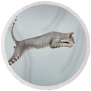 Jumping Peterbald Sphynx Cat On White Round Beach Towel