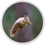 Jumping Red Squirrel Round Beach Towel