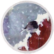Round Beach Towel featuring the digital art Junco In The Snow, Square by Christina Lihani
