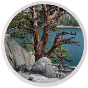 June Lake Juniper Round Beach Towel