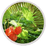 Jungle Begonia Round Beach Towel by Adria Trail