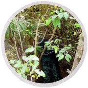Round Beach Towel featuring the photograph Jungle Stream by Francesca Mackenney