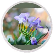 Round Beach Towel featuring the photograph Just A Freesia by Lance Sheridan-Peel