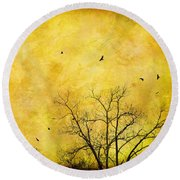 Round Beach Towel featuring the photograph Just A Mirror For The Sun by Jan Amiss Photography