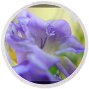 Round Beach Towel featuring the photograph Just Freesia's by Lance Sheridan-Peel
