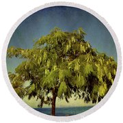 Round Beach Towel featuring the photograph Just One Tree by Milena Ilieva