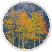 Just The Ten Of Us Round Beach Towel by David Chandler