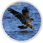 Juvenile Eagle Fishing Round Beach Towel