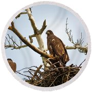 Juvenile Eagles Round Beach Towel