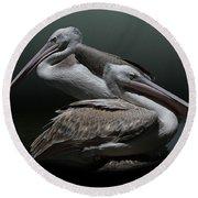 Juxtaposition - Pelicans Round Beach Towel