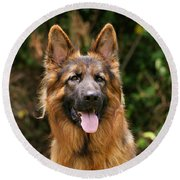 Kaiser - German Shepherd Round Beach Towel by Sandy Keeton
