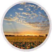 Kansas Sunflowers At Sunset Round Beach Towel