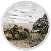 Round Beach Towel featuring the photograph Keeping Watch by Angie Rea