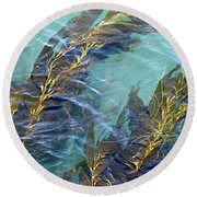 Kelp Patterns Round Beach Towel