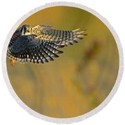 Kestrel Takes Flight Round Beach Towel