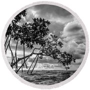 Key Largo Mangroves Round Beach Towel