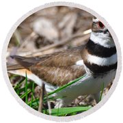 Killdeer Mother Round Beach Towel