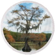 King Cypress Round Beach Towel