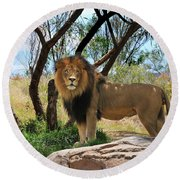King Of His Domain Round Beach Towel