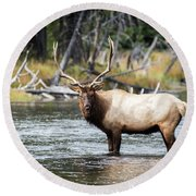 King Of The River Round Beach Towel