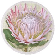 Round Beach Towel featuring the painting King Protea Blossom - Vintage Style Botanical Floral 1 by Audrey Jeanne Roberts
