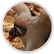 Round Beach Towel featuring the photograph King Vulture 1 by Chris Flees