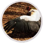 Round Beach Towel featuring the photograph King Vulture 2 Strutting by Chris Flees