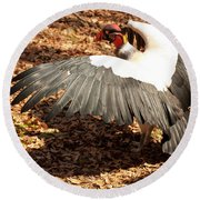 Round Beach Towel featuring the photograph King Vulture 3 Strutting by Chris Flees