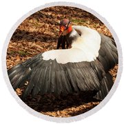 Round Beach Towel featuring the photograph King Vulture 4 Strutting by Chris Flees