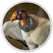 King Vulture Round Beach Towel by Jamie Pham
