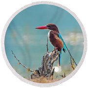 Round Beach Towel featuring the photograph Kingfisher On A Stump by Pravine Chester