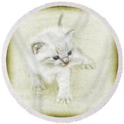Kitten Art Round Beach Towel