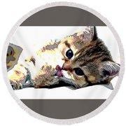 Kitten Round Beach Towel by Charles Shoup