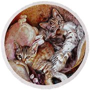 Kitten Cuteness Overload Round Beach Towel